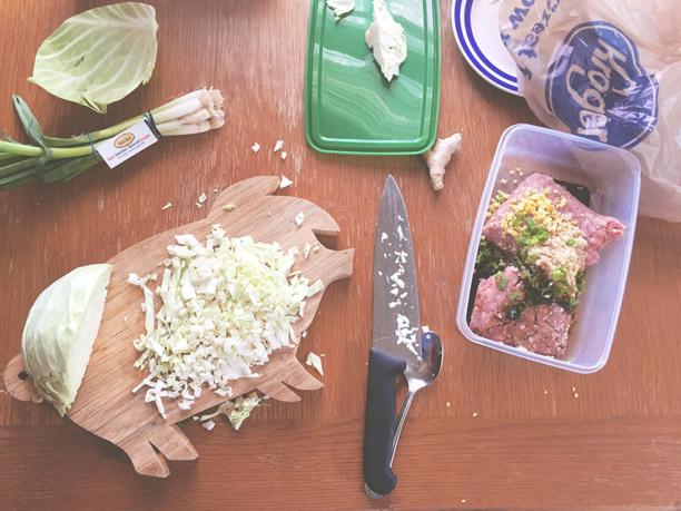 Making Dumplings by Hand