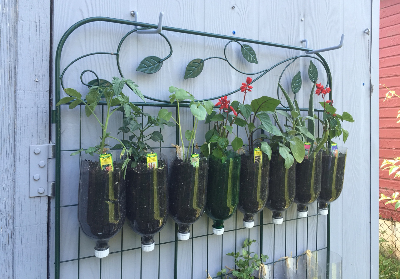 How to Build a DIY Vertical Garden Sarah Lawrence